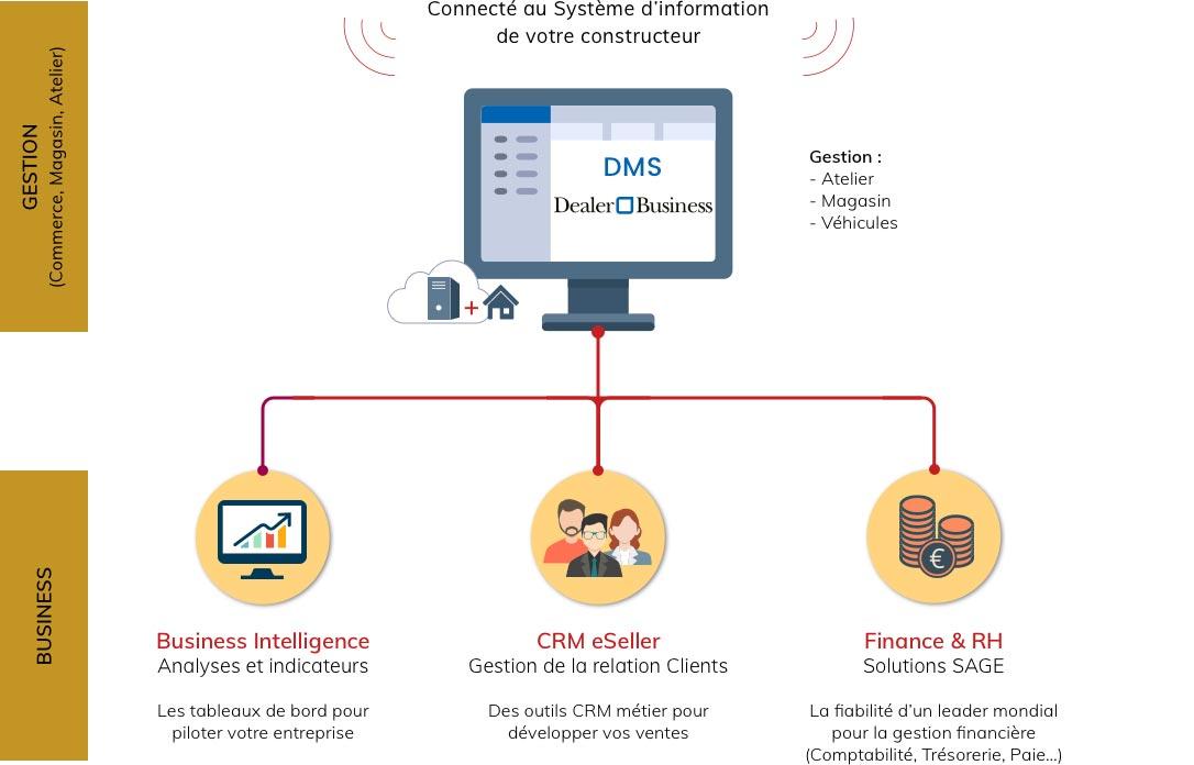 Skilliance Maroc - DMS Orienté Business